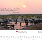 zukunft-afrika-ev-kalender-landschaften-tiere-2020-0003