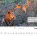 zukunft-afrika-ev-kalender-landschaften-tiere-2020-0009