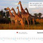 zukunft-afrika-ev-kalender-landschaften-tiere-2020-0010