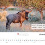 zukunft-afrika-ev-kalender-landschaften-tiere-2020-0012